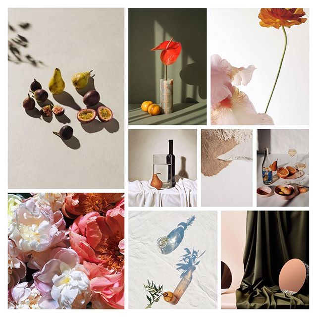 Florals and shadows and light play, oh my! ✨ A glimpse of some moody inspiration for last weekends photoshoot 📷💐🍋 Can't wait to share!  #citronnade #moodboard #floralinspiration #lightandshadow #sfstudio