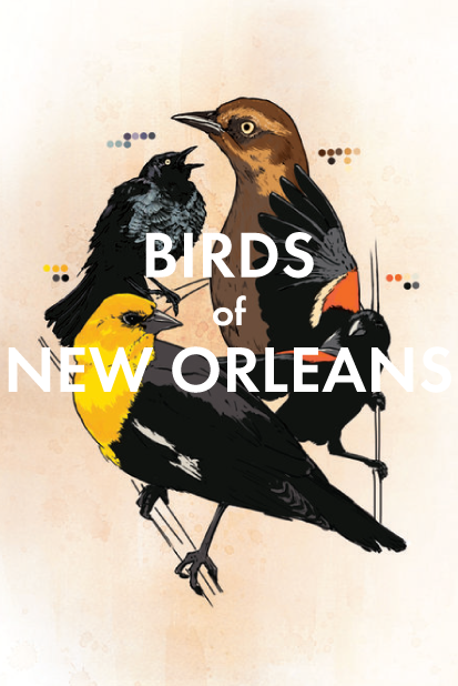 Birds of New Orleans