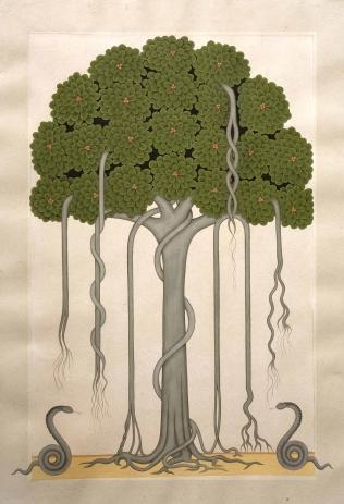 Banyan Tree, 2010