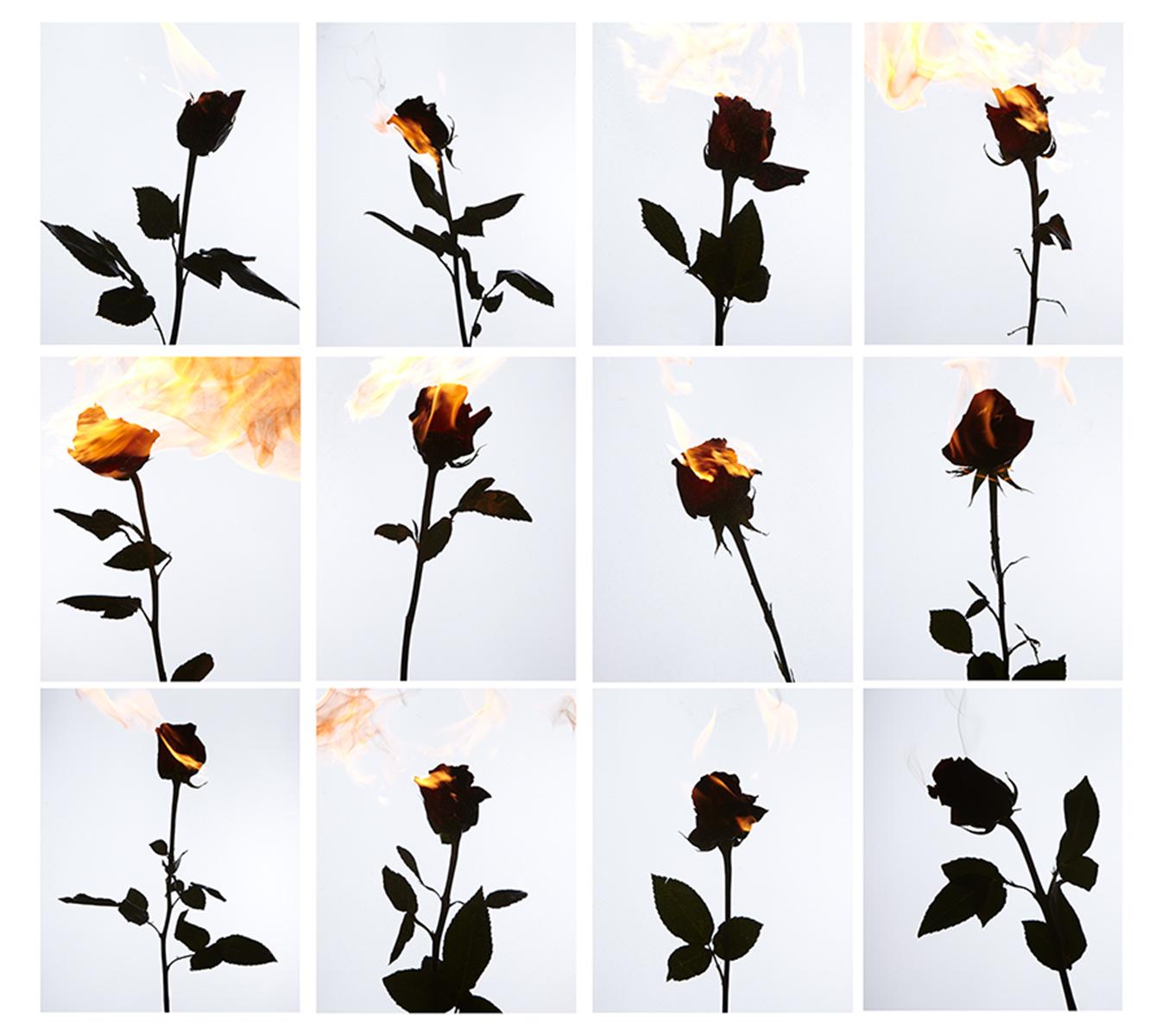 AnnieBuado_Flowers_06.jpg