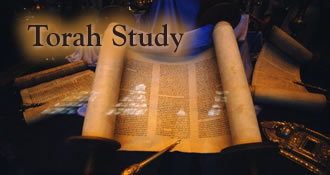 Please join us for Torah Study, Saturdays at 11:00 am