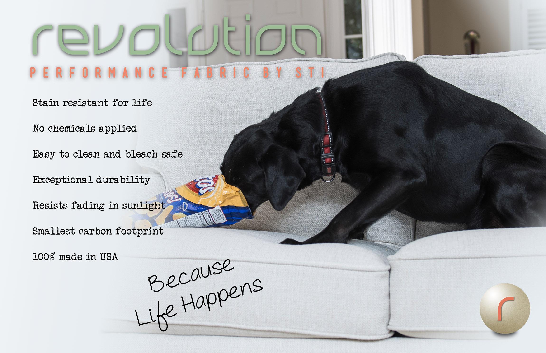 DogRevolution.jpg