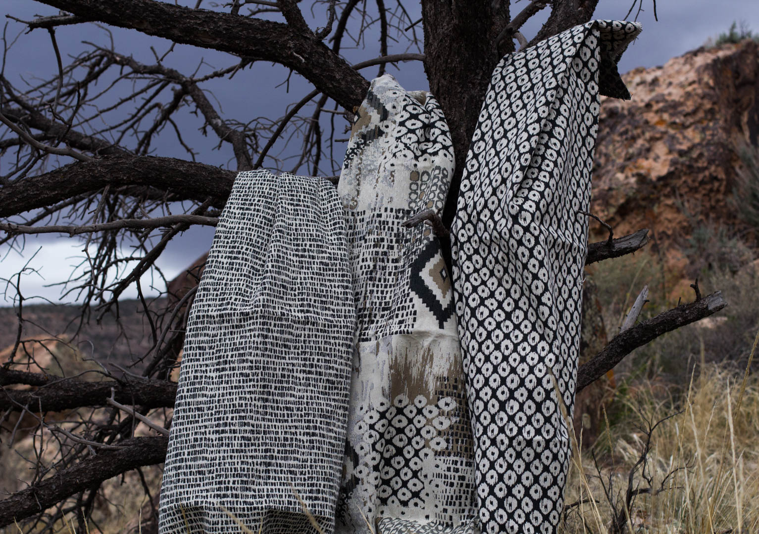 Fabric on a tree 2.jpg
