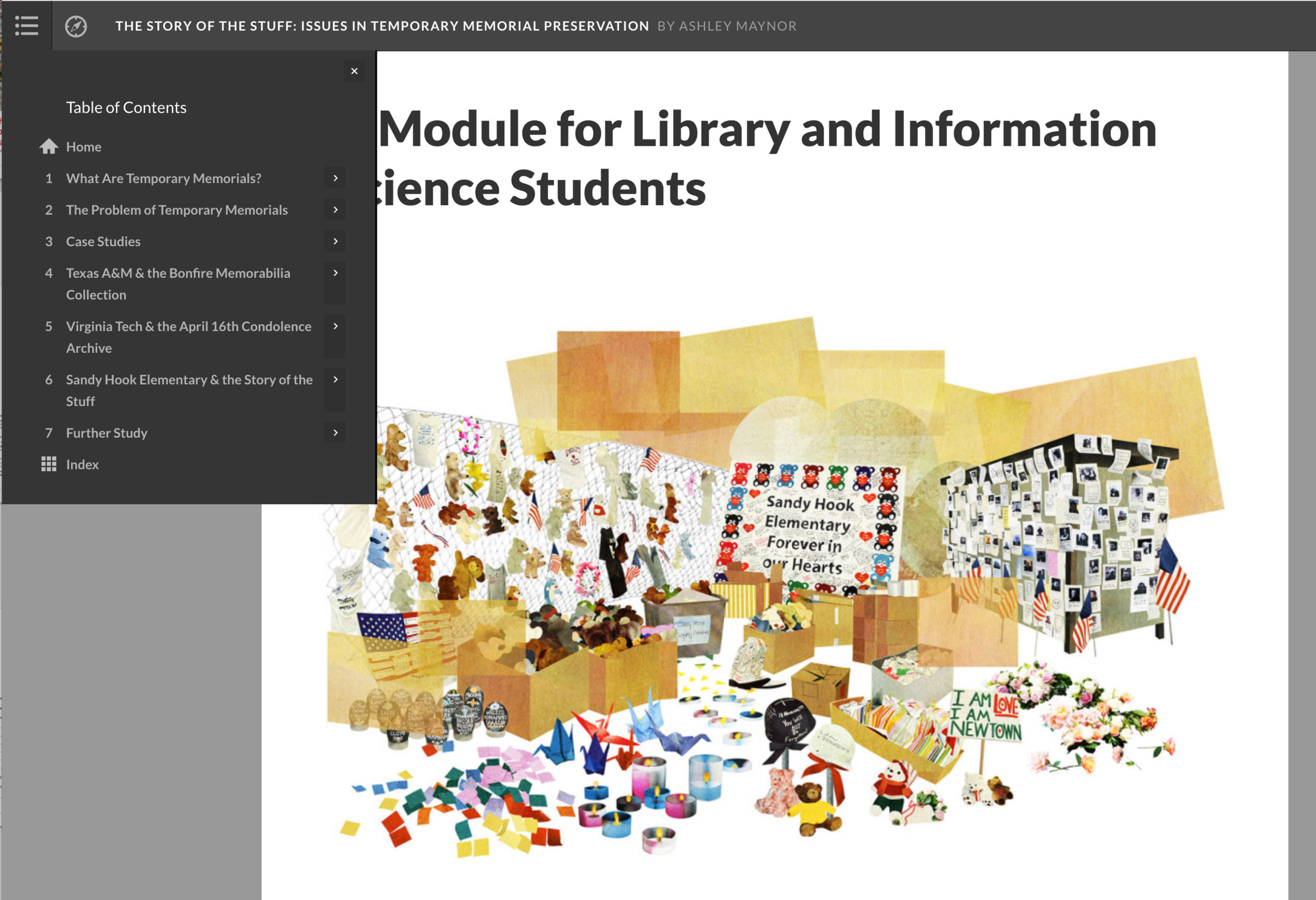 For LIS Students - This module is an online, interactive lesson designed for graduate students in Library and Information Sciences. It includes images, video, and exercises to explore the role of libraries and archives in documenting and preserving the materials left at temporary or makeshift memorials. It may used in conjunction with exploration of the The Story of the Stuff web documentary or as a standalone tutorial.