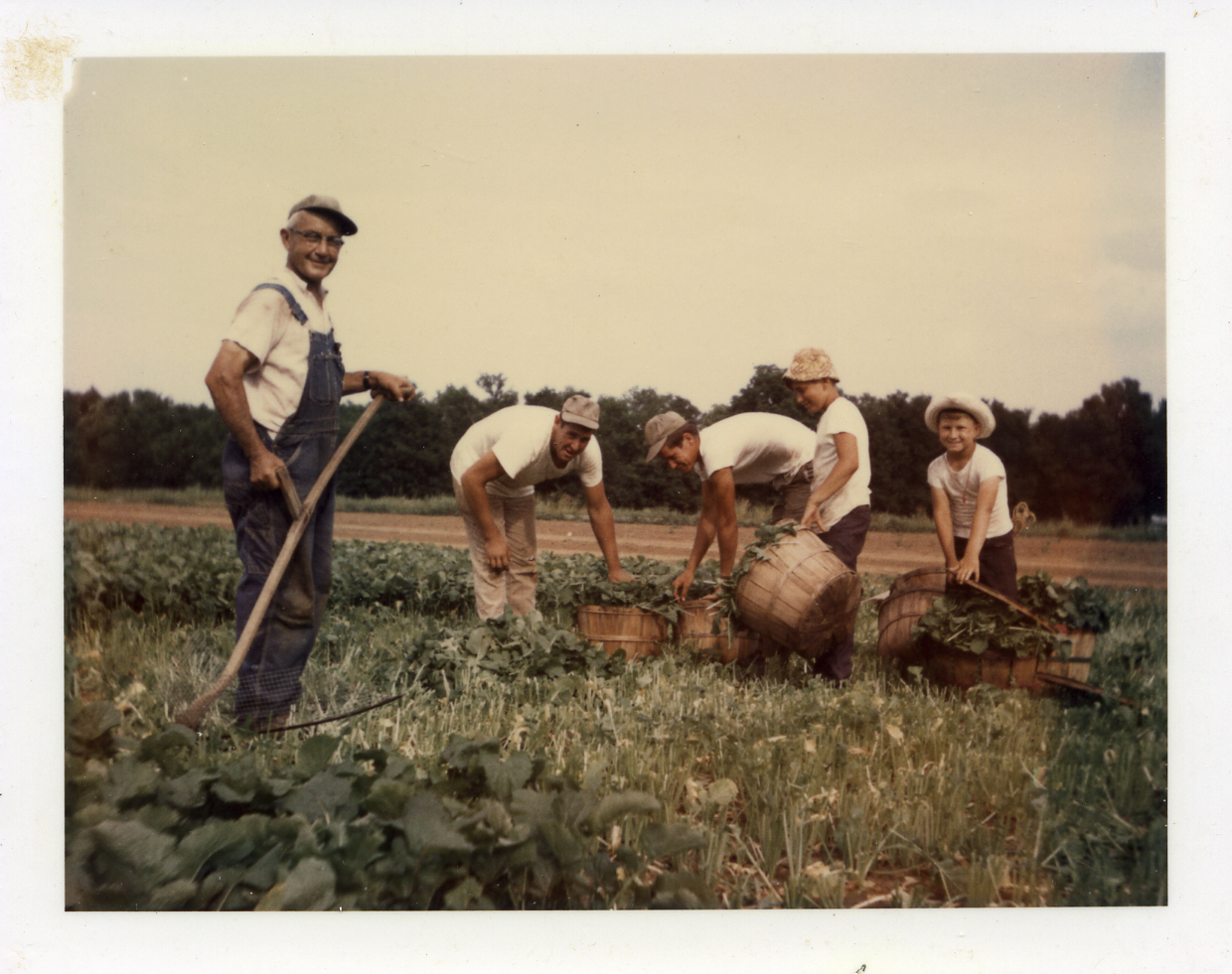 My great-grandfather, Louis Baltz, working on his farm.