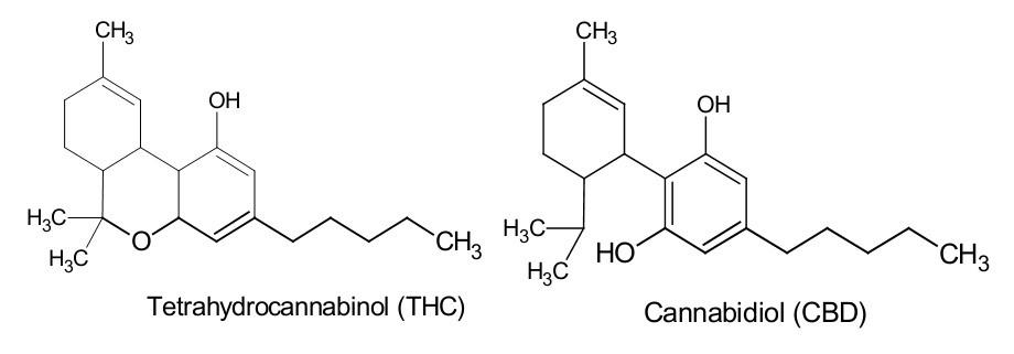 THC-vs-CBD-chemical-structure.jpg