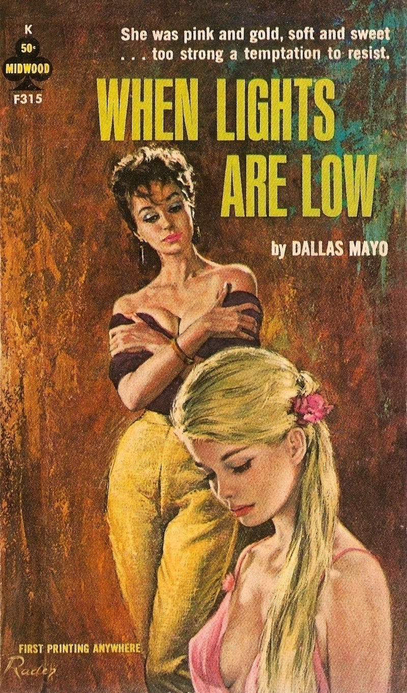 The lesbian novels written by men, like Dallas Mayo's 1963  When Lights Are Low , have largely been lost to time.