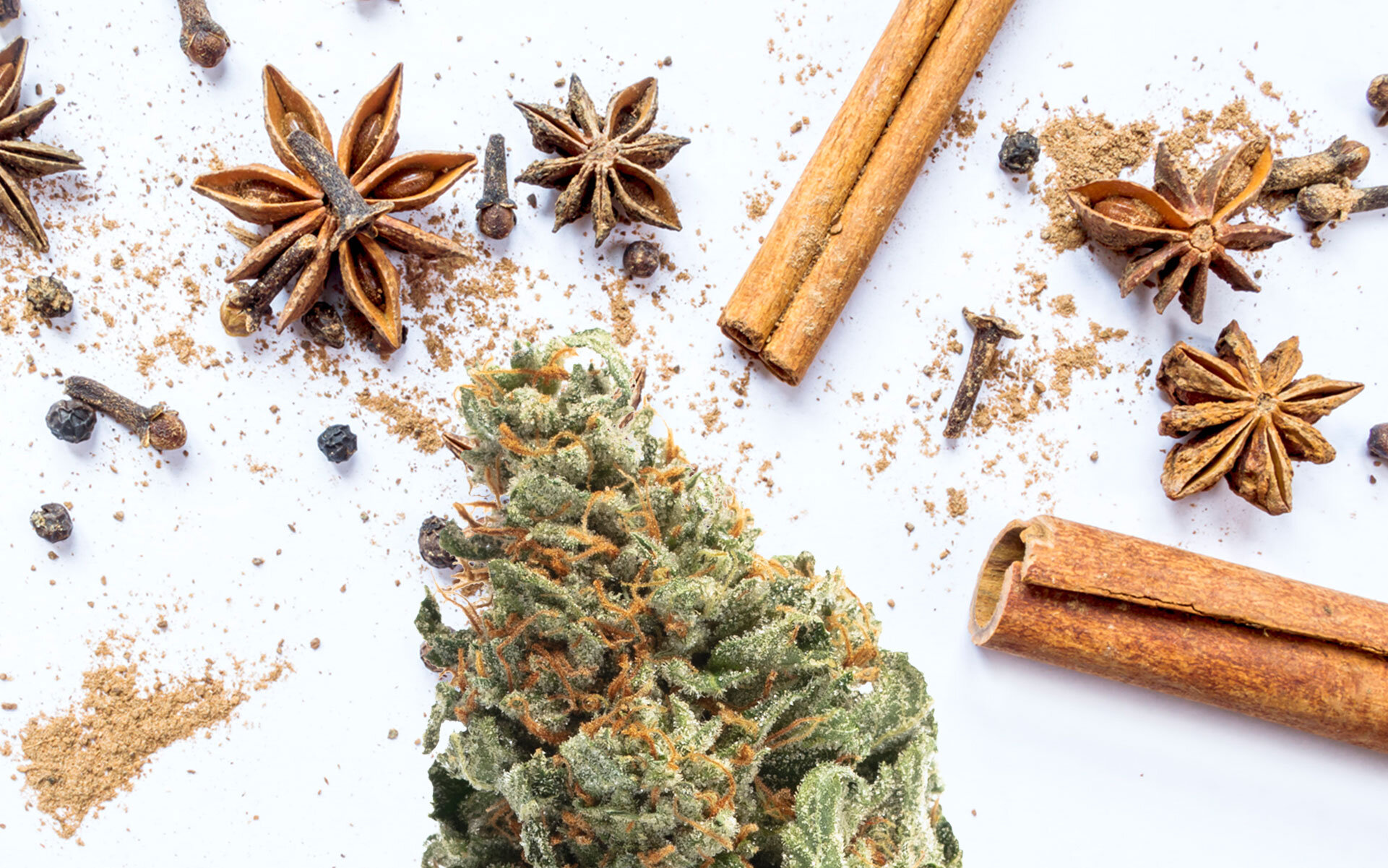 strains-for-people-who-like-spiced-terpenes.jpg