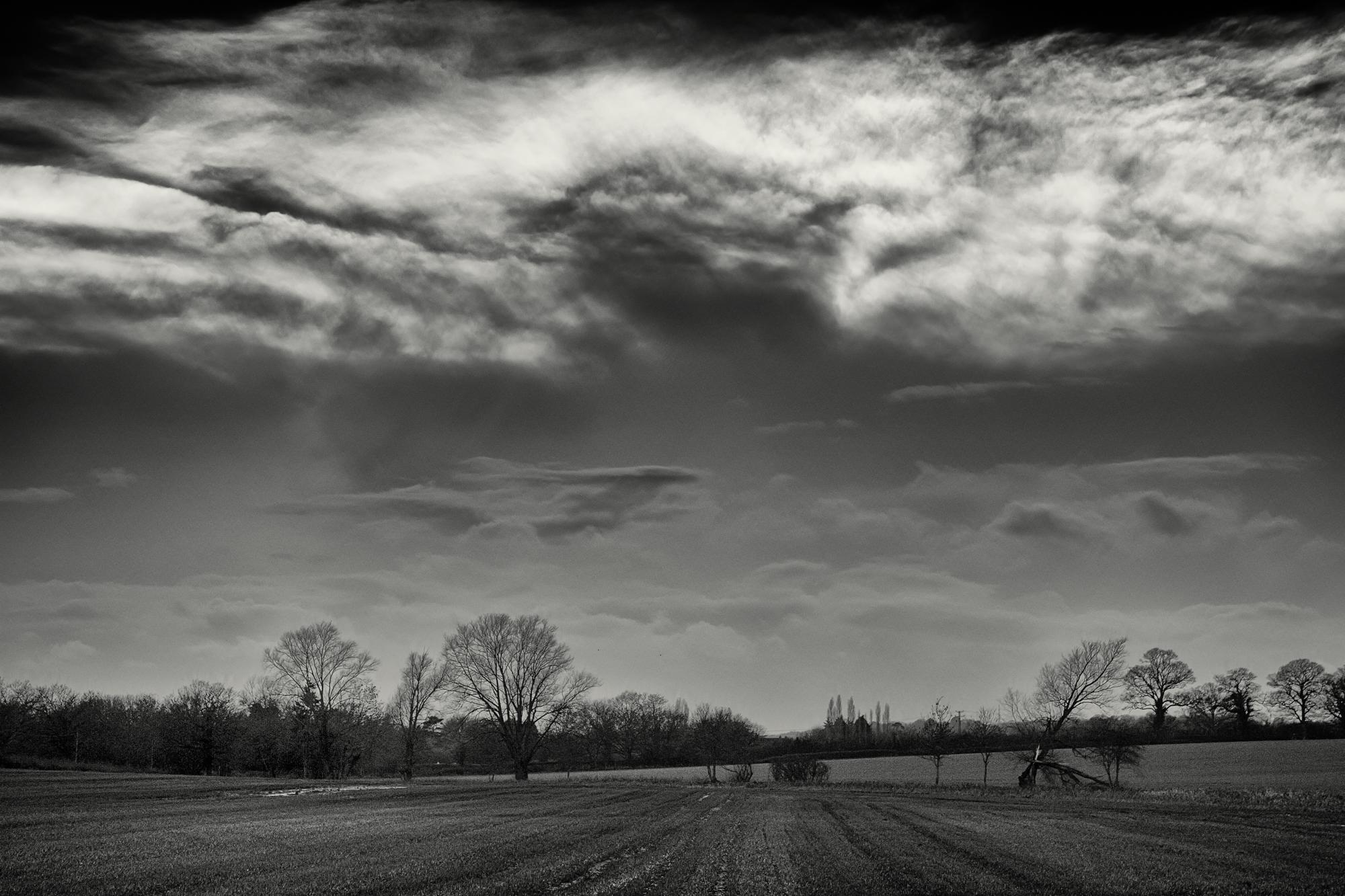 Warfield Walk 056.jpg