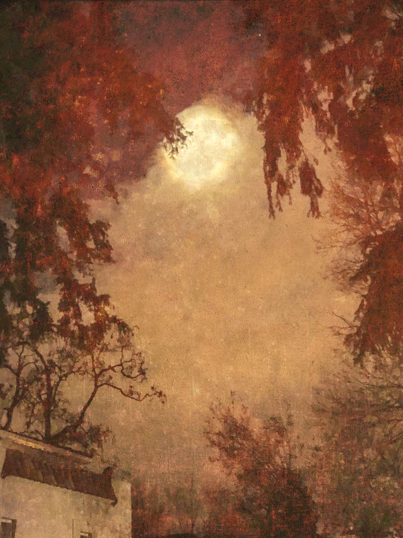 wendi-schneider-an-evening-with-the-moon-gilded-kozo-1500.jpg