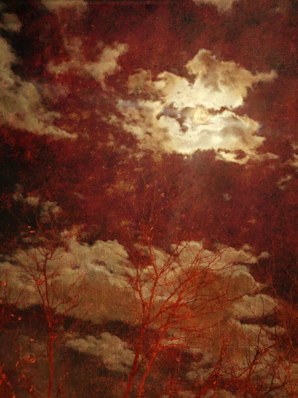 wendi-schneider-veiled-moon-gilded-kozo-1500.jpg