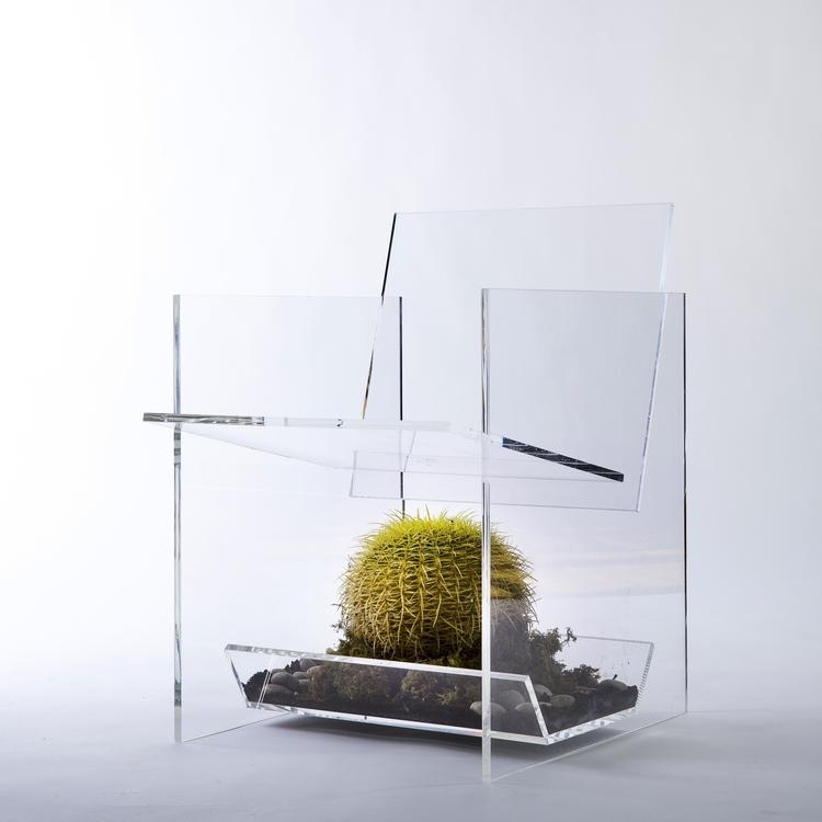 Undead+Cactus.jpg
