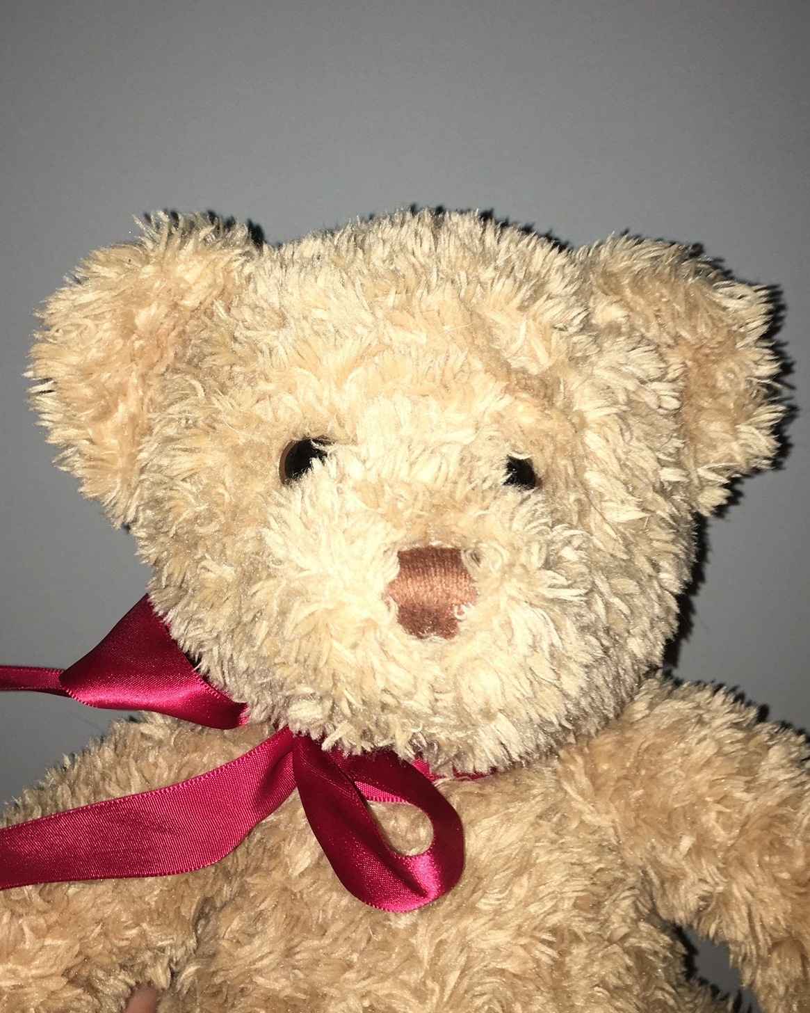 A photo of a teddy bear with flash