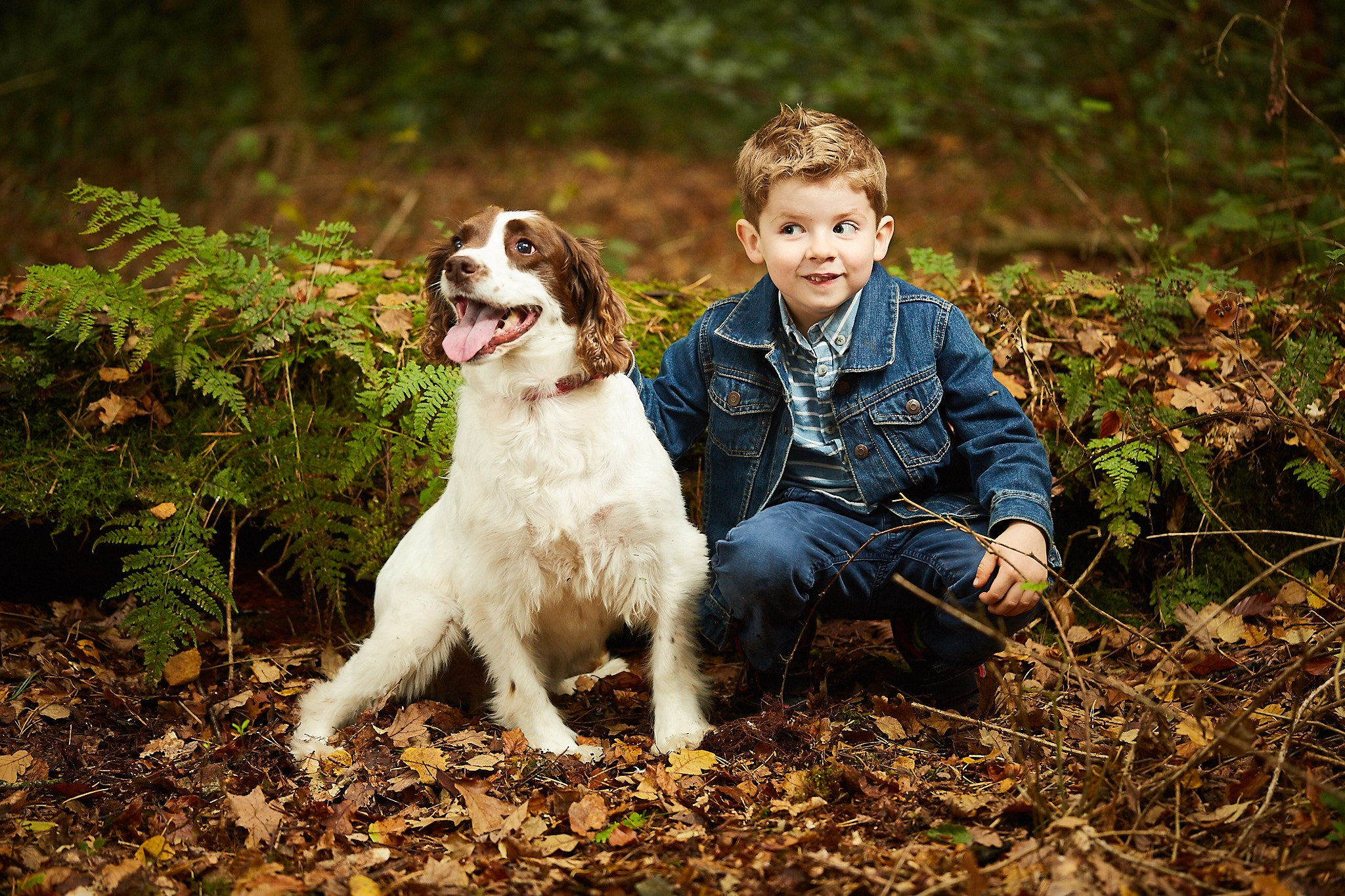Promotion for excellent family Photography Lincolnshire