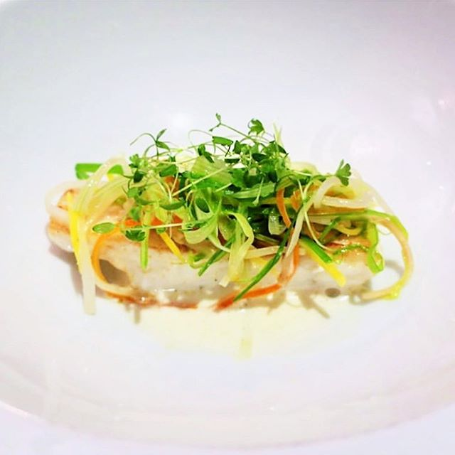 Roasted Wild Turbot Filet with Vegetable Julienne. Classic for a reason. #seegerstyle  Thank you to @four_calendar_cafe for the beautiful photo