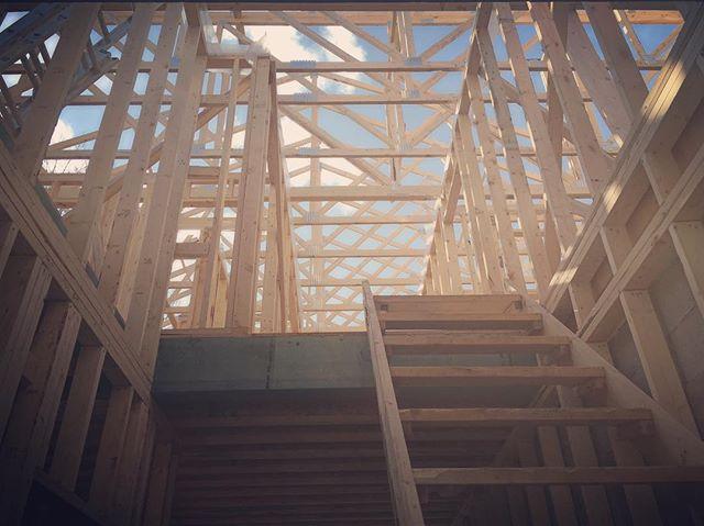 Going Up? . . . #ProjectPaddingtonHouse #Renovation #Build #LifeDesigned #Lifestyle #InteriorDesign