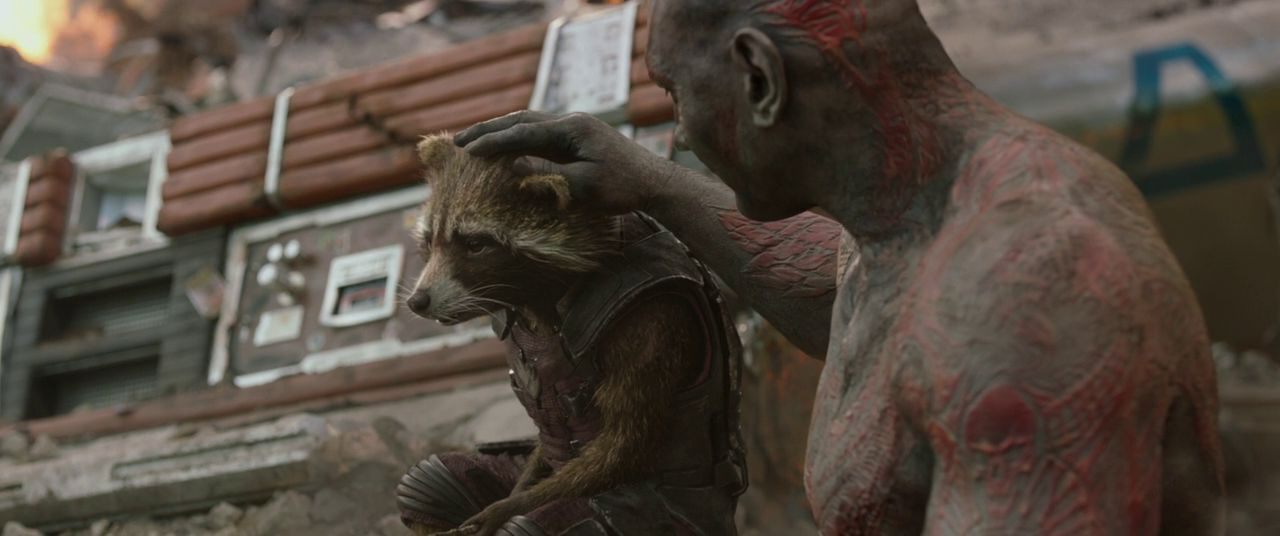 Best on screen moment between a raccoon and a wrestler.