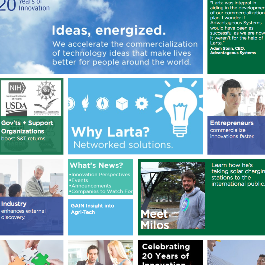 Larta Institute. Branding and Responsive Web Site.