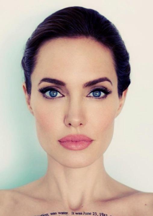 Angelina Jolie - Dark Brunette - Dark Brown & Black Mix