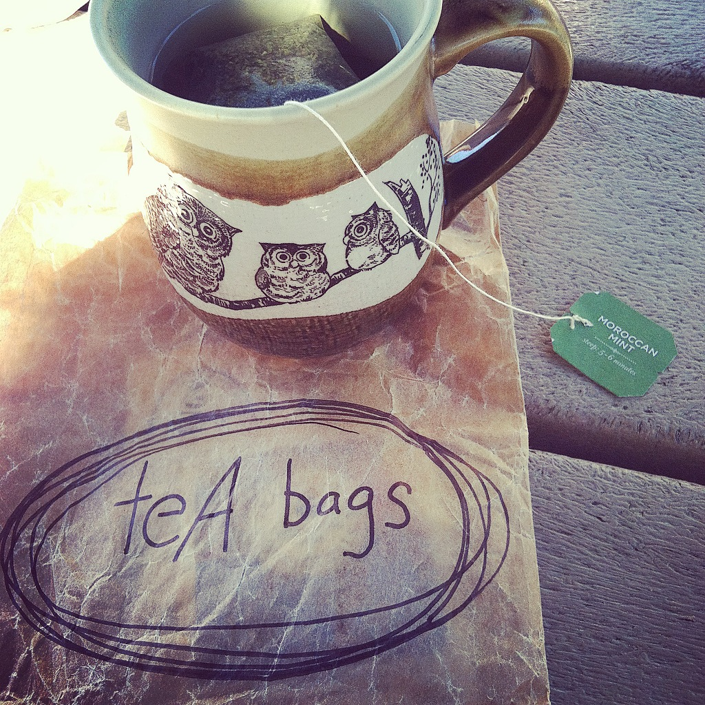 Toolbox Supply #1 - Carry your own tea bags + become THAT lady!