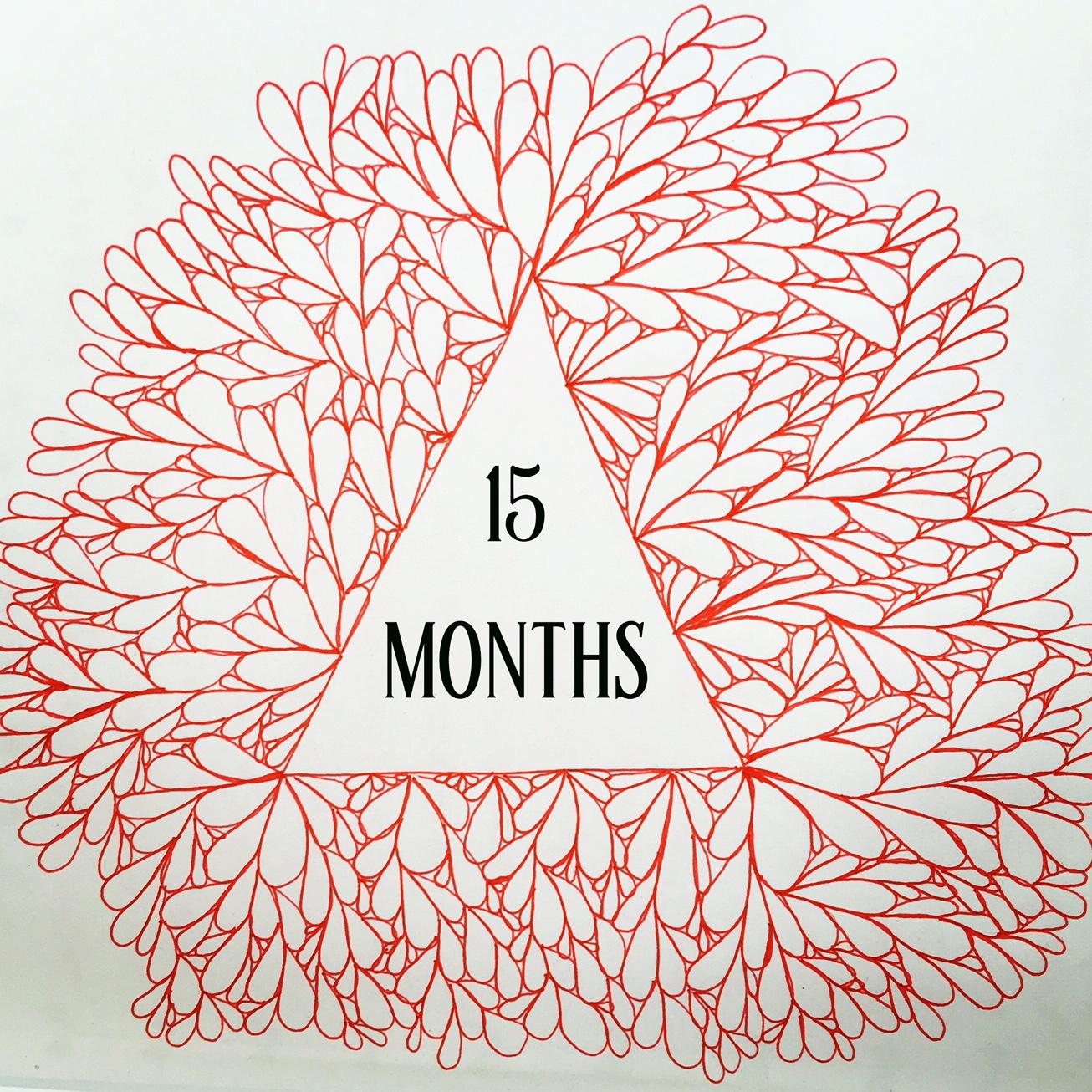 15 months.JPG