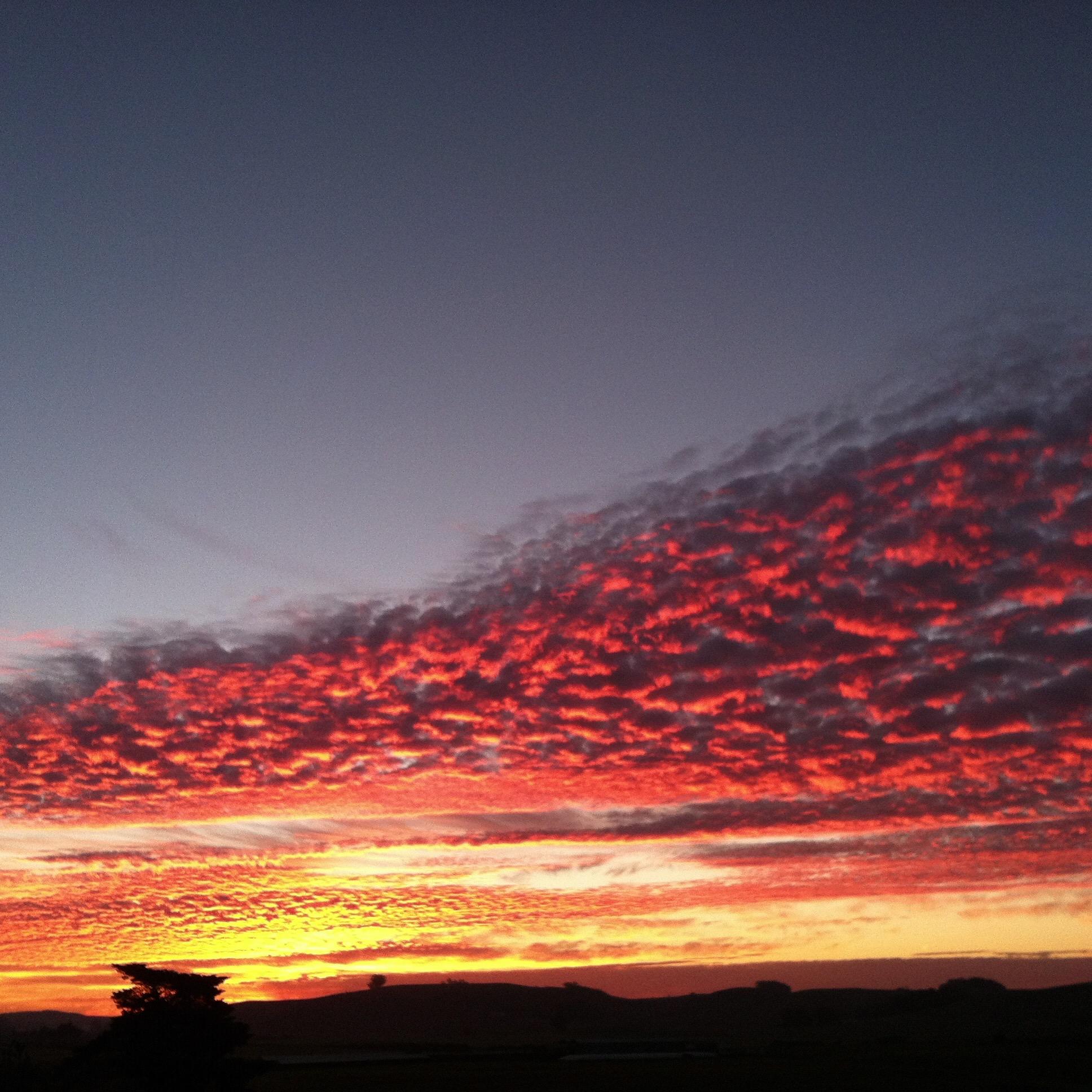 An Arizona desert at sunset (November 2015)