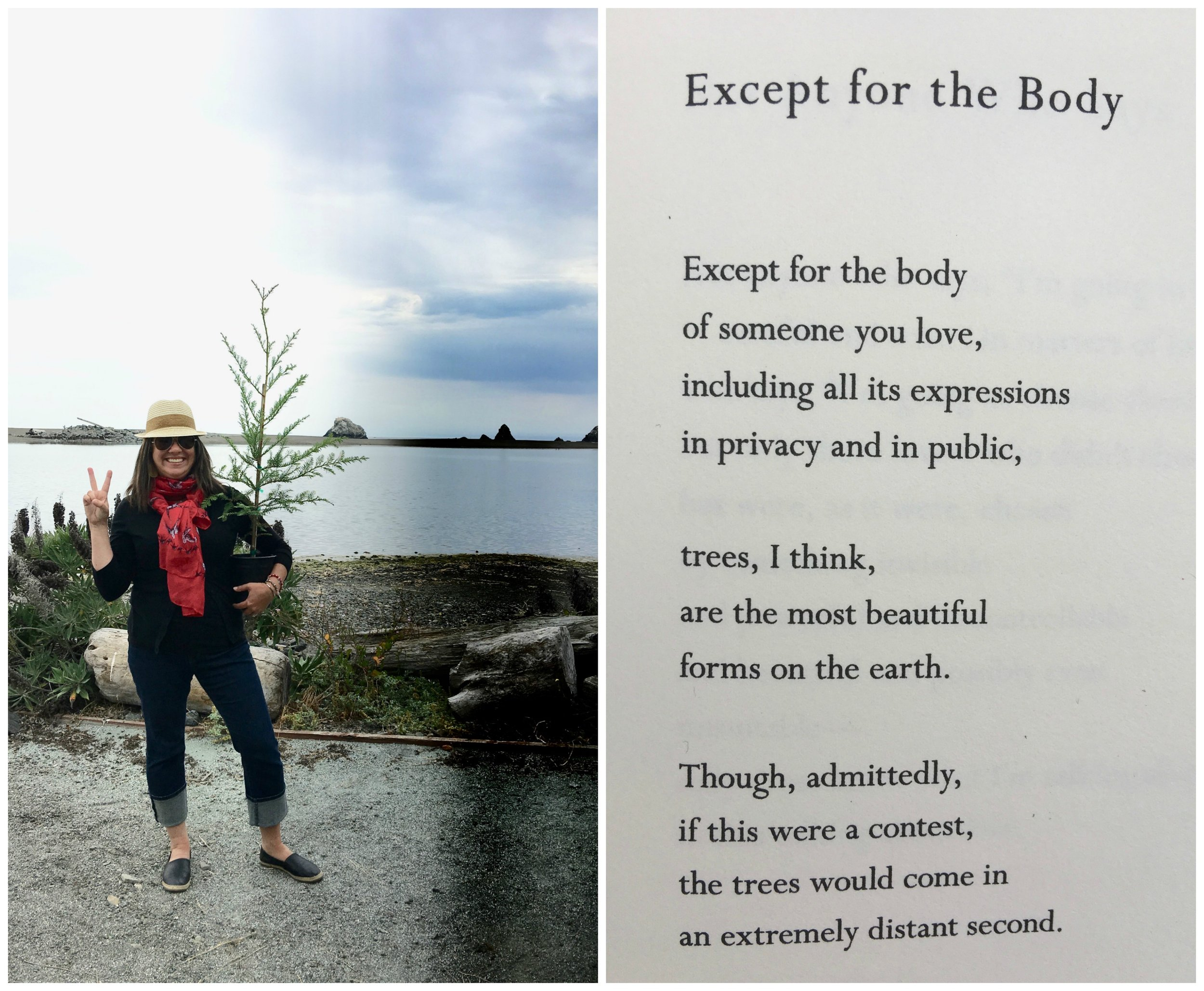 We planted a redwood tree, along with some of Kacy's ashes, up in Jenner, CA. The poem is by Mary Oliver.
