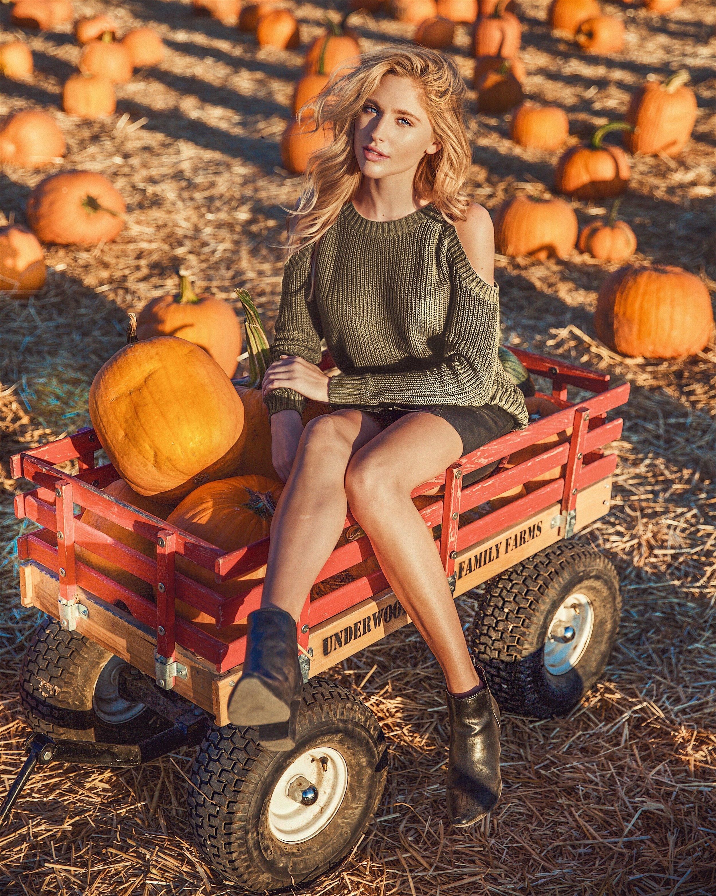 Pumpkin patch wagon
