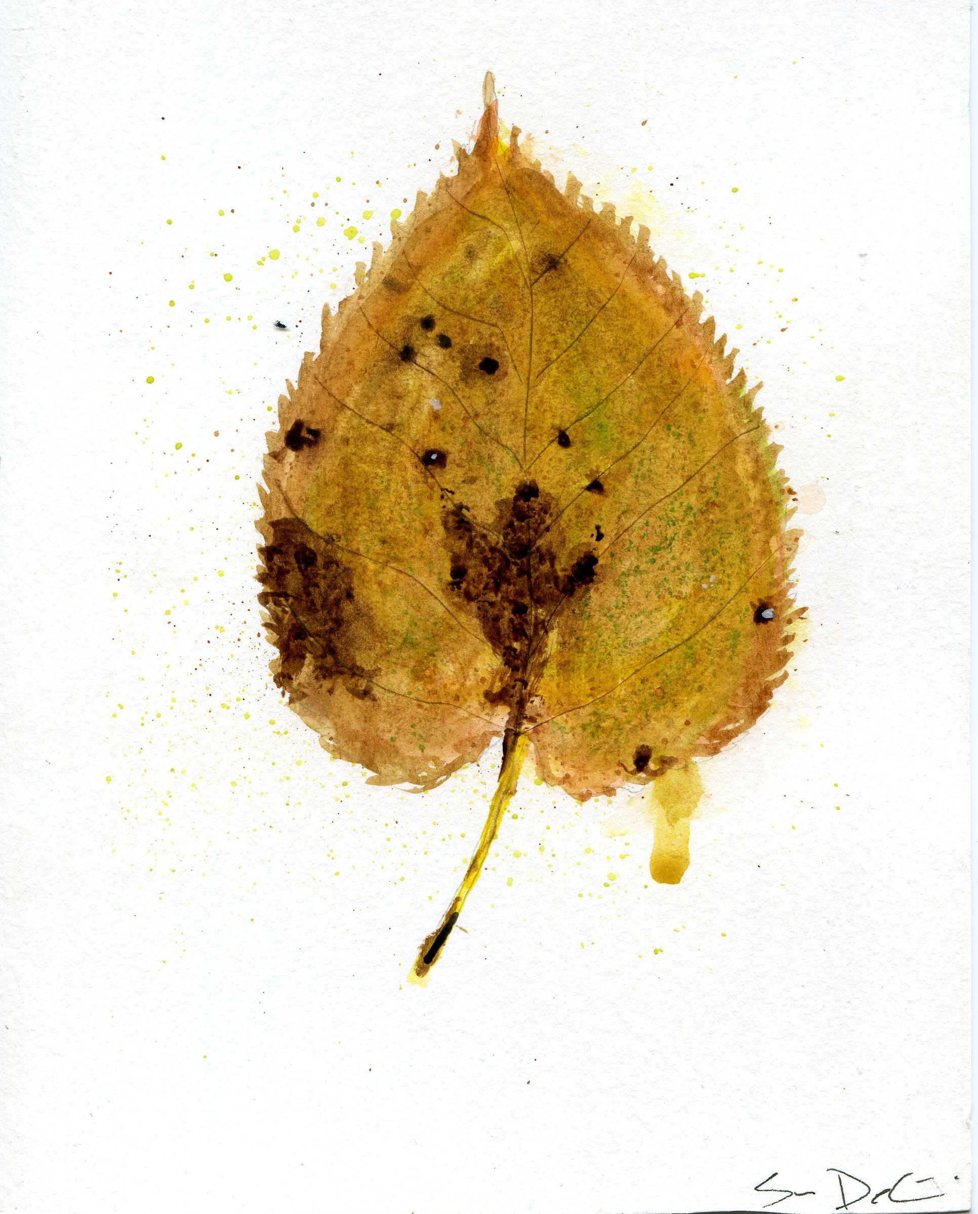 Birch Leaf Portrait 002  SOLD