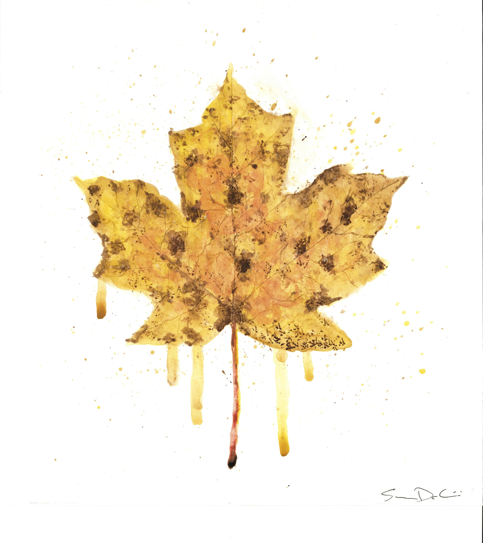 Maple Leaf Portrait 004 - SOLD