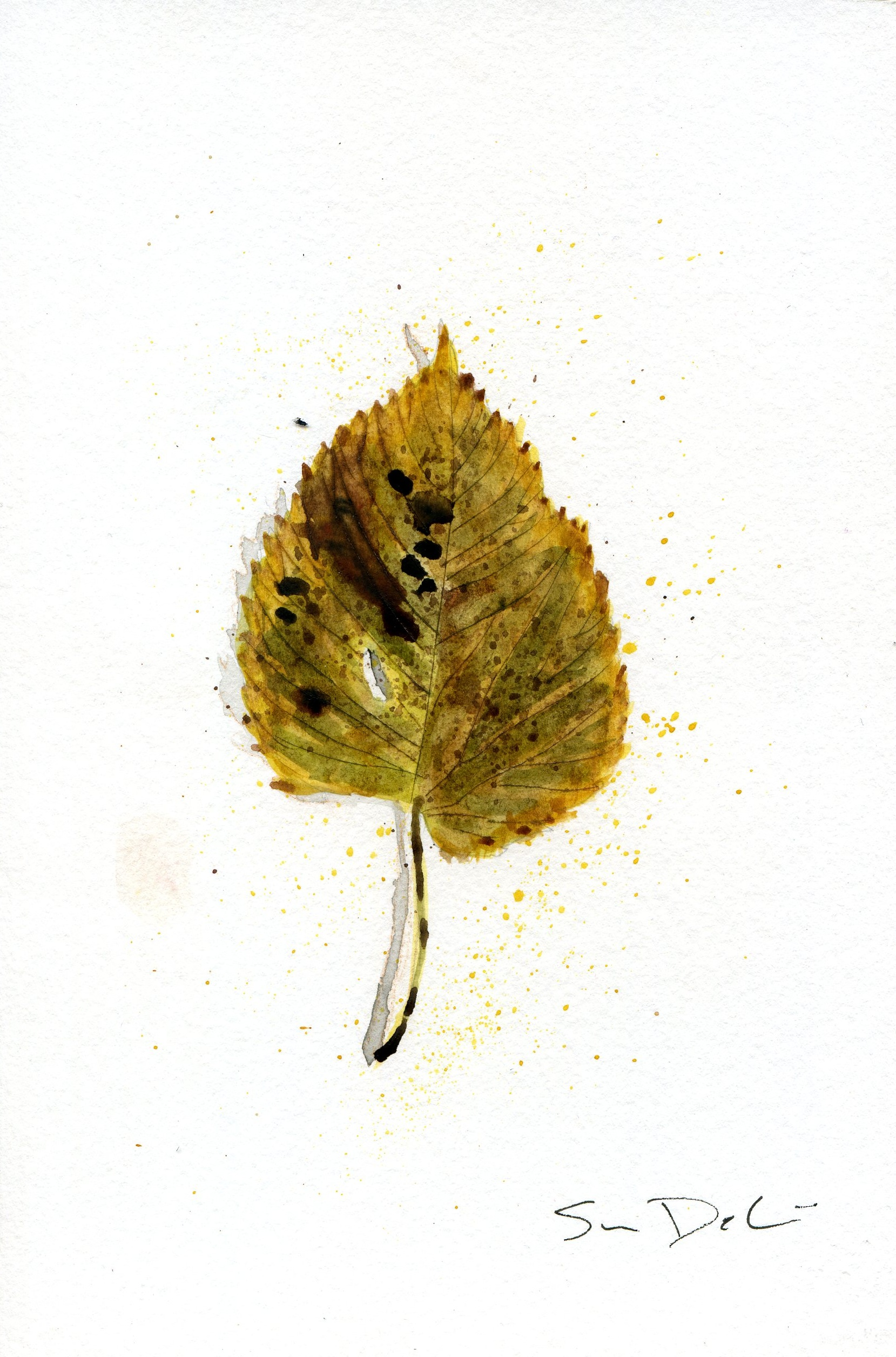 Birch Leaf Portrait 013 - SOLD