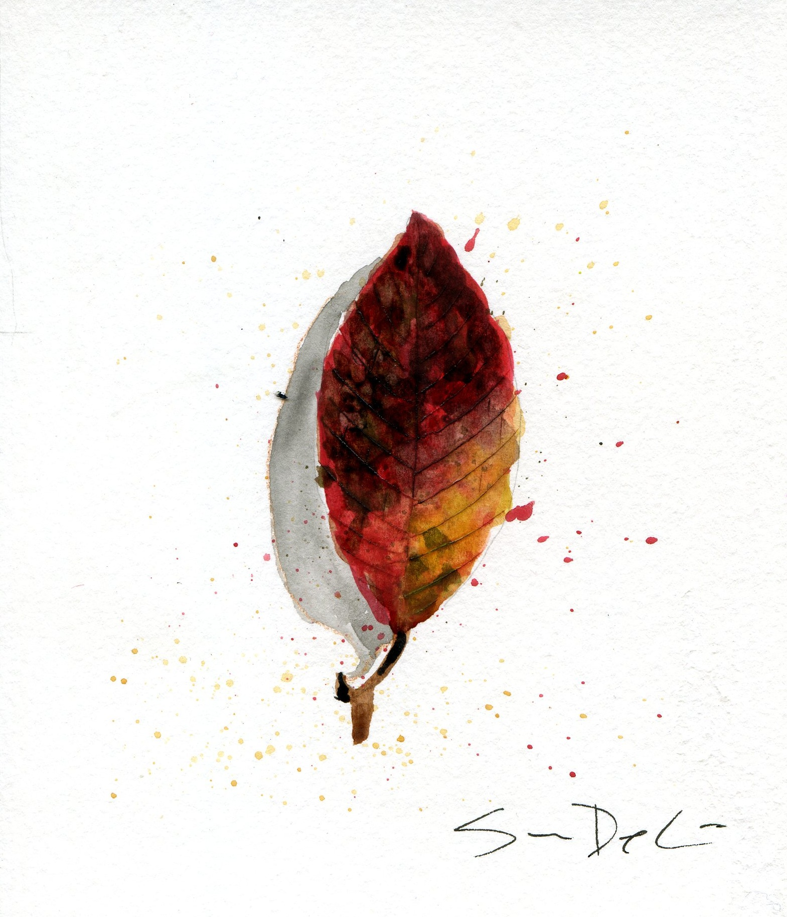 Leaf 015.jpg