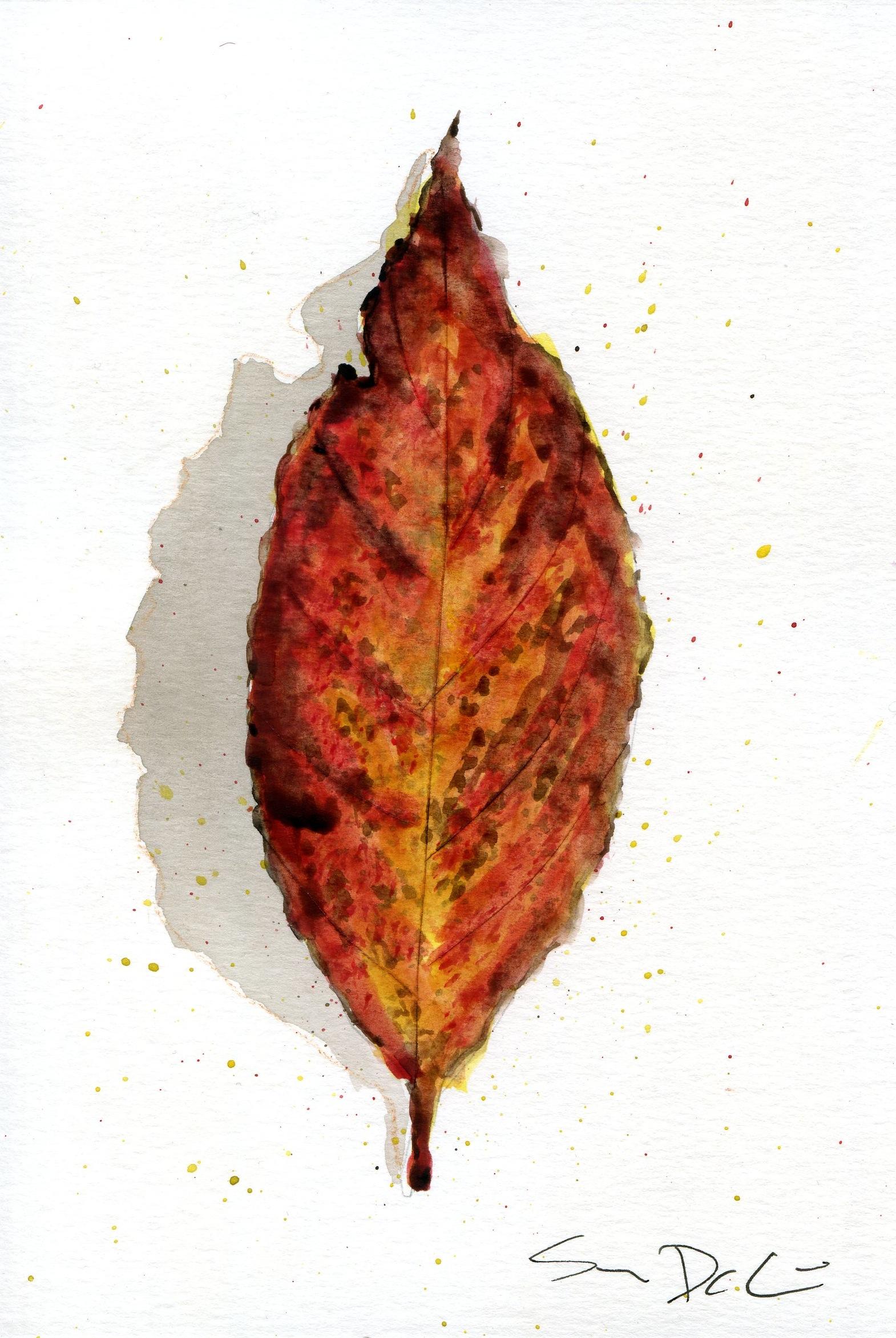 Leaf 034.jpg