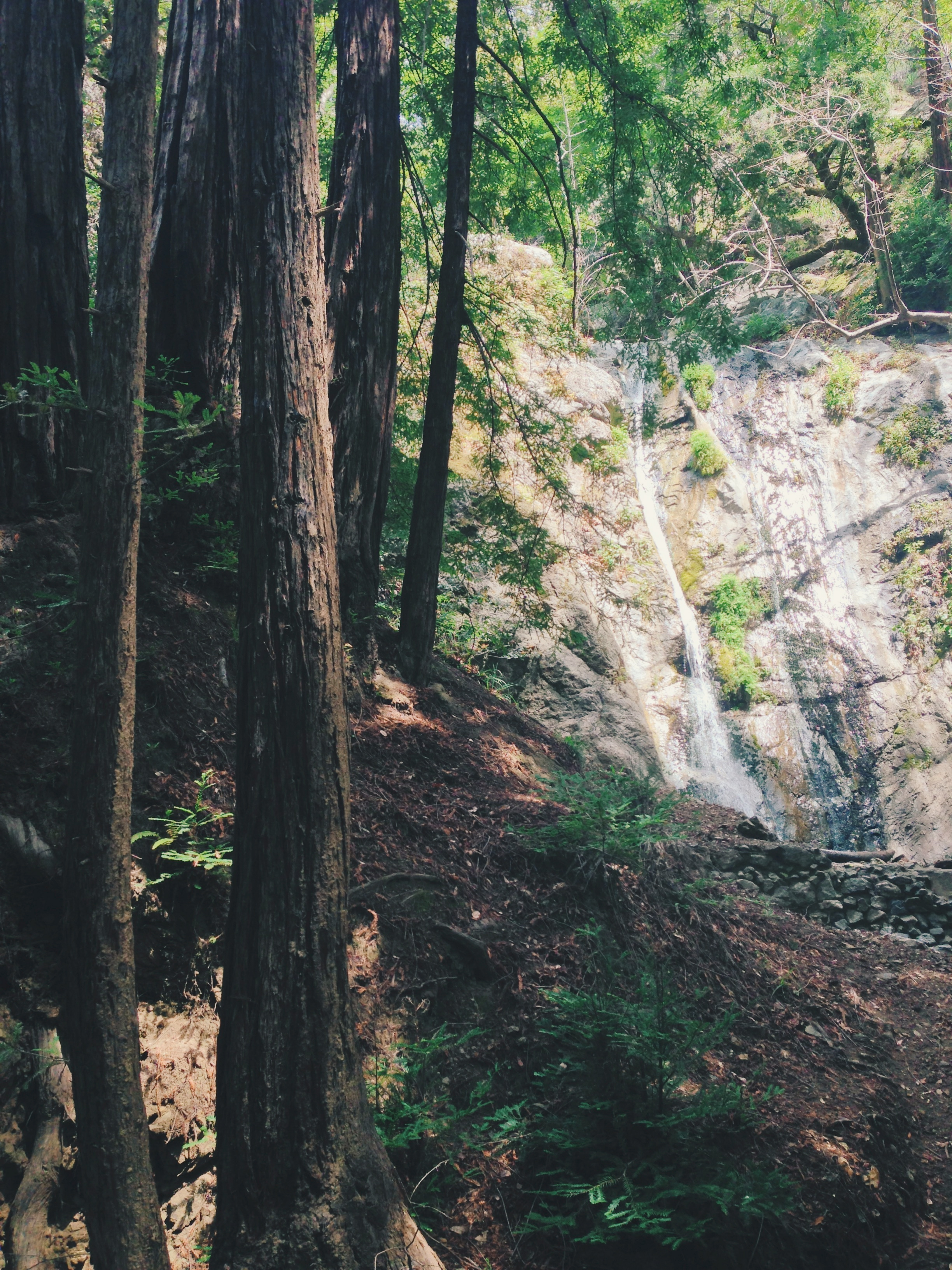 Pfeiffer Falls, Big Sur