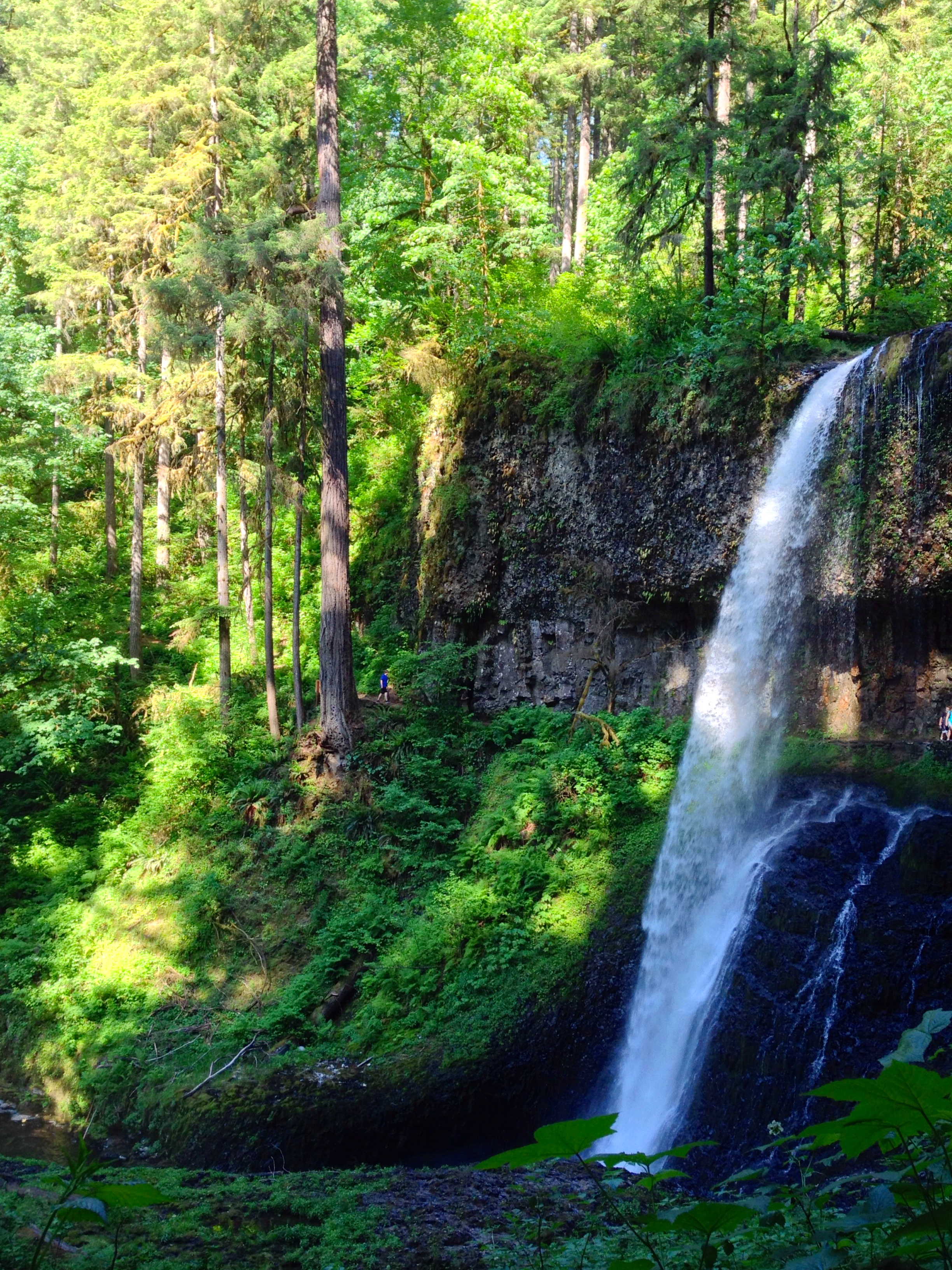 Middle North Falls, OR (106 ft)