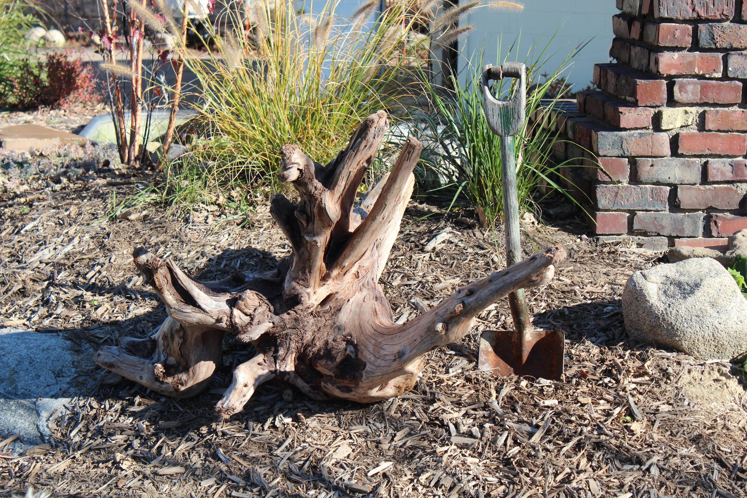 Driftwood Minneapolis