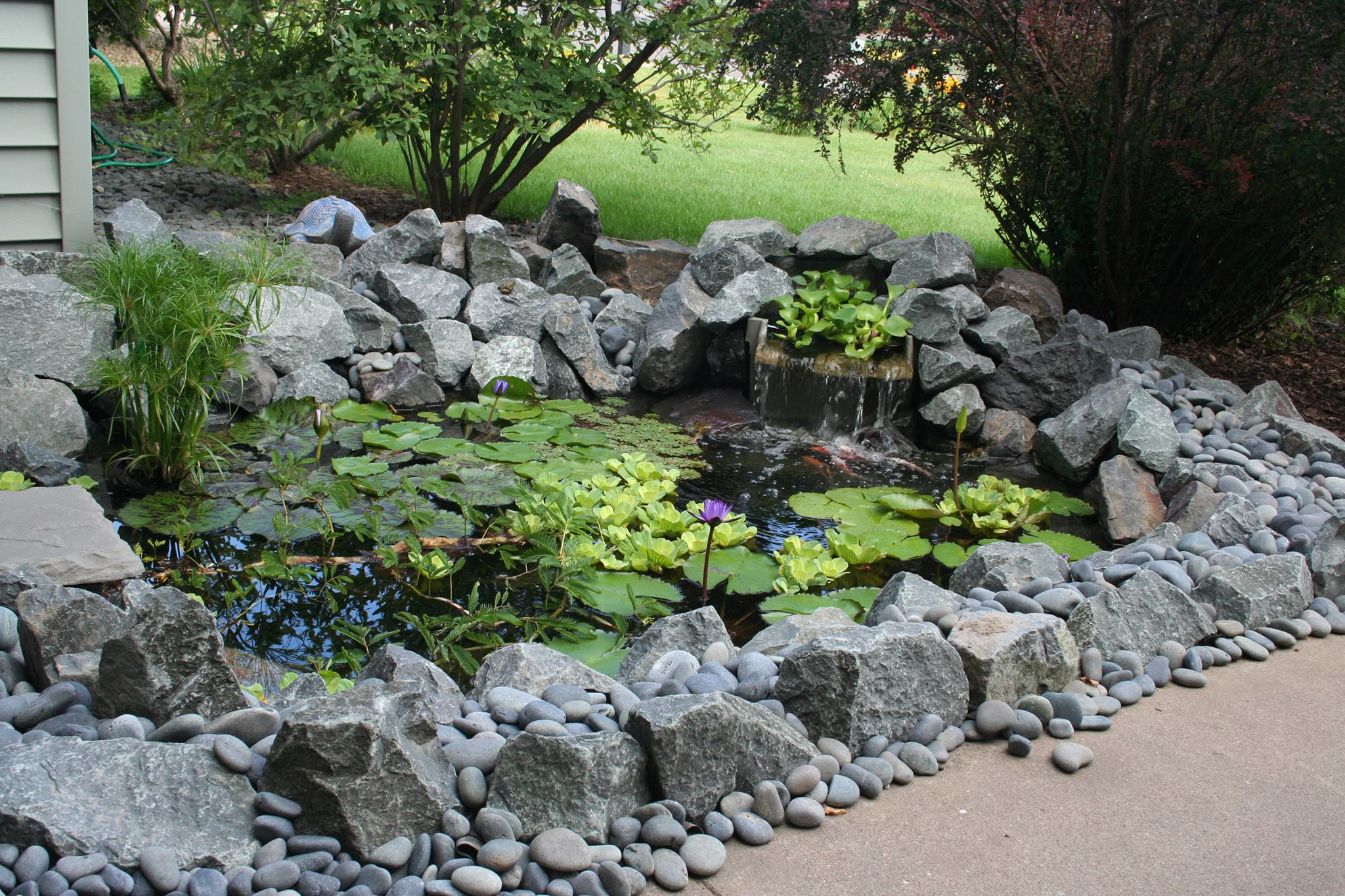 backyard-pond-ideas-minneapolis.jpg