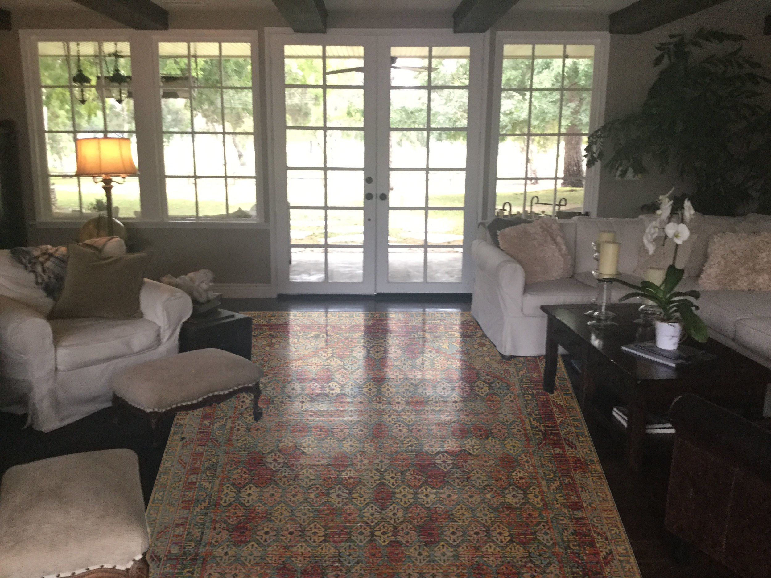 rug in living room.jpg