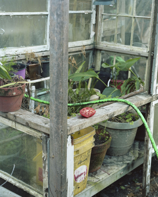 Bill's Garden001.jpg