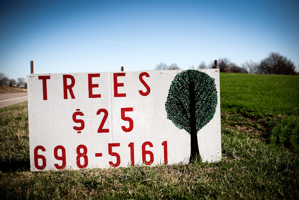 Trees for $25