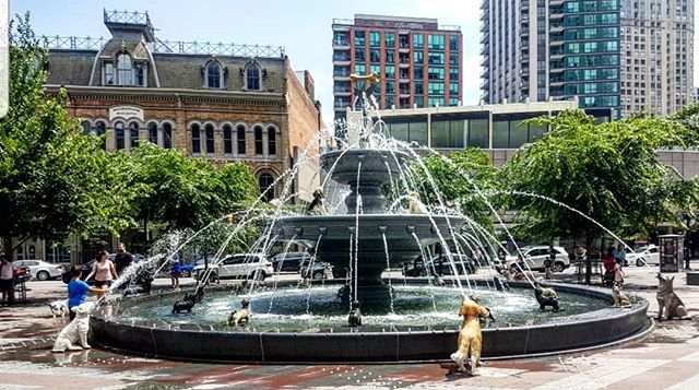 Stroll through #BerczyPark. @charlenemani @talibdef Nelson would love this! 🐶 #dogs #dogfountain #Toronto #6ix #summer #instagood