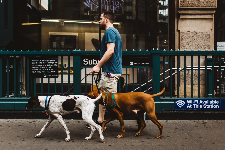 Jillian VanZytveld Photography - New York City Travel Photography 027.jpg