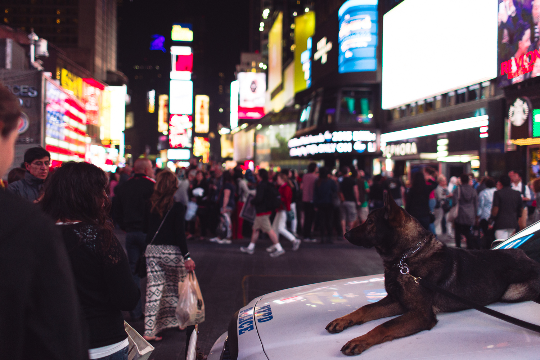 Jillian VanZytveld Photography - New York City Travel Photography 106.jpg