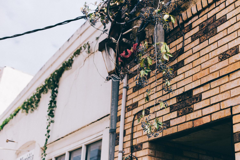 Jillian VanZytveld Photography - Mississippi Travel Photography - 13.jpg