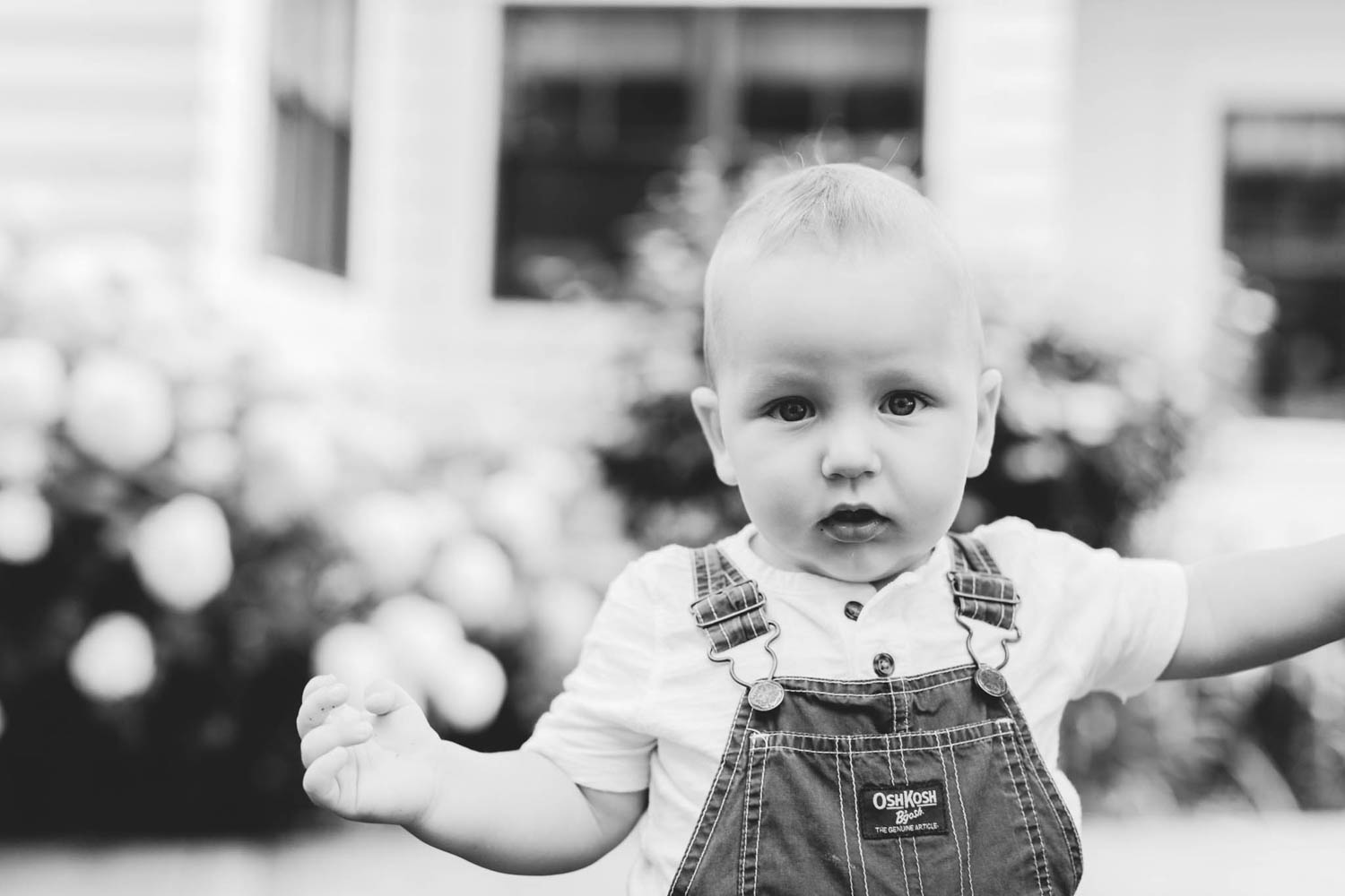 Jillian VanZytveld Photography - West Michigan Lifestyle Photography - 15.jpg