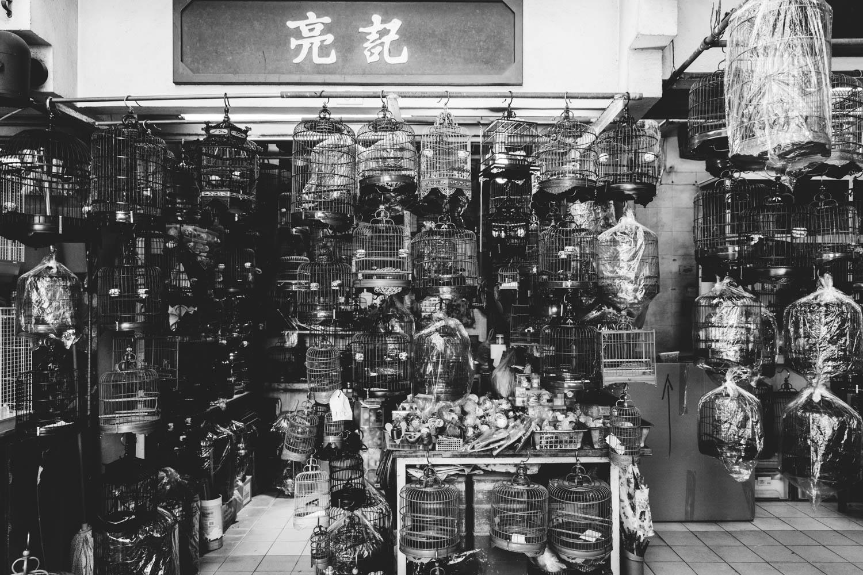 20171116-HK-241.jpg