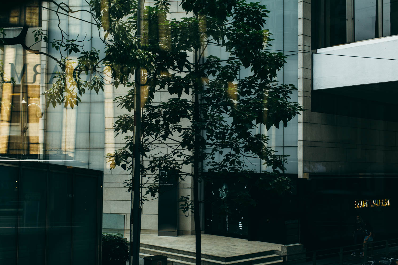 20171118-HK-0091.jpg