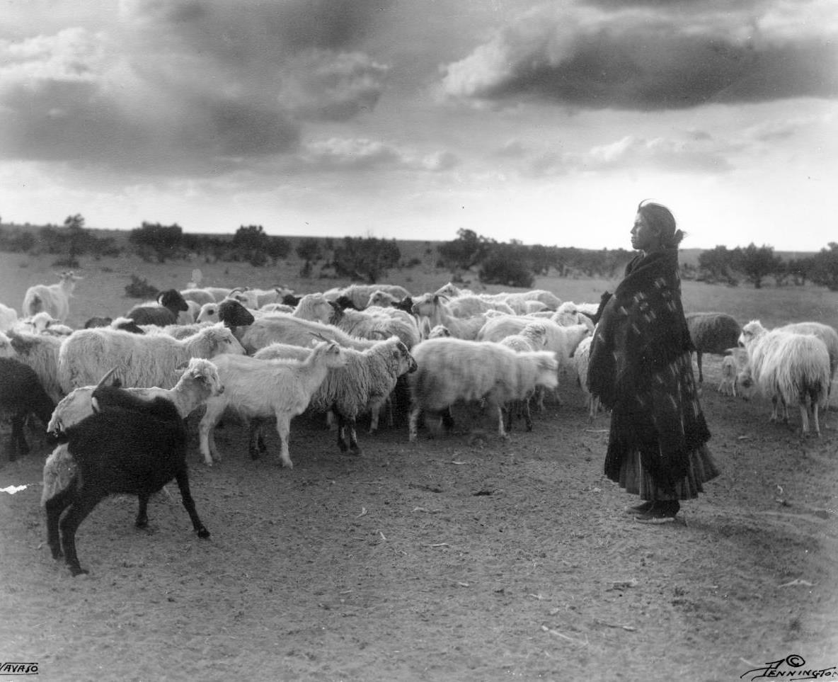 SheepHerding-Woman-1900sEarly.jpg