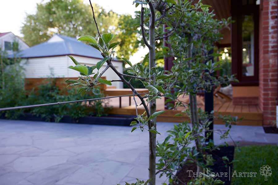 landscaping_ballarat_garden_webster-st_03.jpg