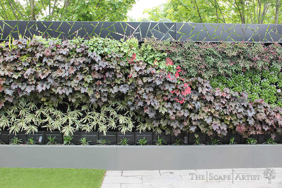 landscape-gardening_newington-ballarat_06.JPG
